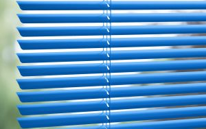 Blue internal venetian blinds.